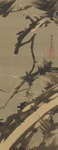 伊藤若冲(いとうじゃくちゅう)「松図」(まつず)江戸時代/ 寛政8 年(1796) 絹本墨画 1 幅