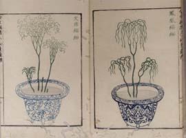 栗原信充著「松葉蘭譜」天保7年(1836) 雑花園文庫蔵3_3l