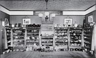 モース日本陶器コレクション(写真)