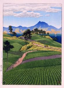 日本風景選集 天草より見たる温泉ヶ嶽