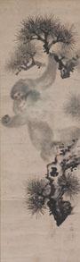 「松に猿図」 明和2年(1765)頃 紙本墨画 個人蔵
